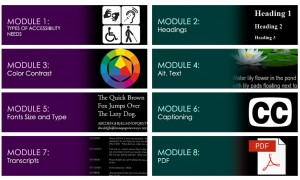 Image of Accessibility Modules in e-Learning Course