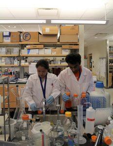 PHOTO: Graduate students in the Emerging Pathogens Institute (June 2017)