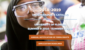 Primary image of the undergraduate course catalog website for 2018-2019.