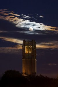 PHOTO: A Moonlit image of UF Century Tower