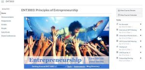 Entrepreneurship Course Screen Capture in Canvas e-Learning